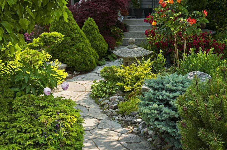 Советы по благоустройству садового участка
