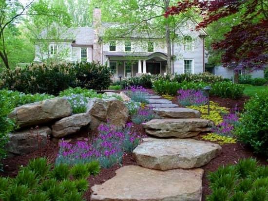 Цветы отлично смотрятся с любым ландшафтным дизайном